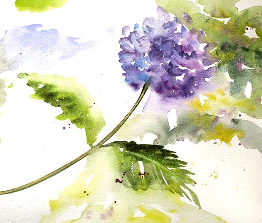 class-w-flowers13.jpg
