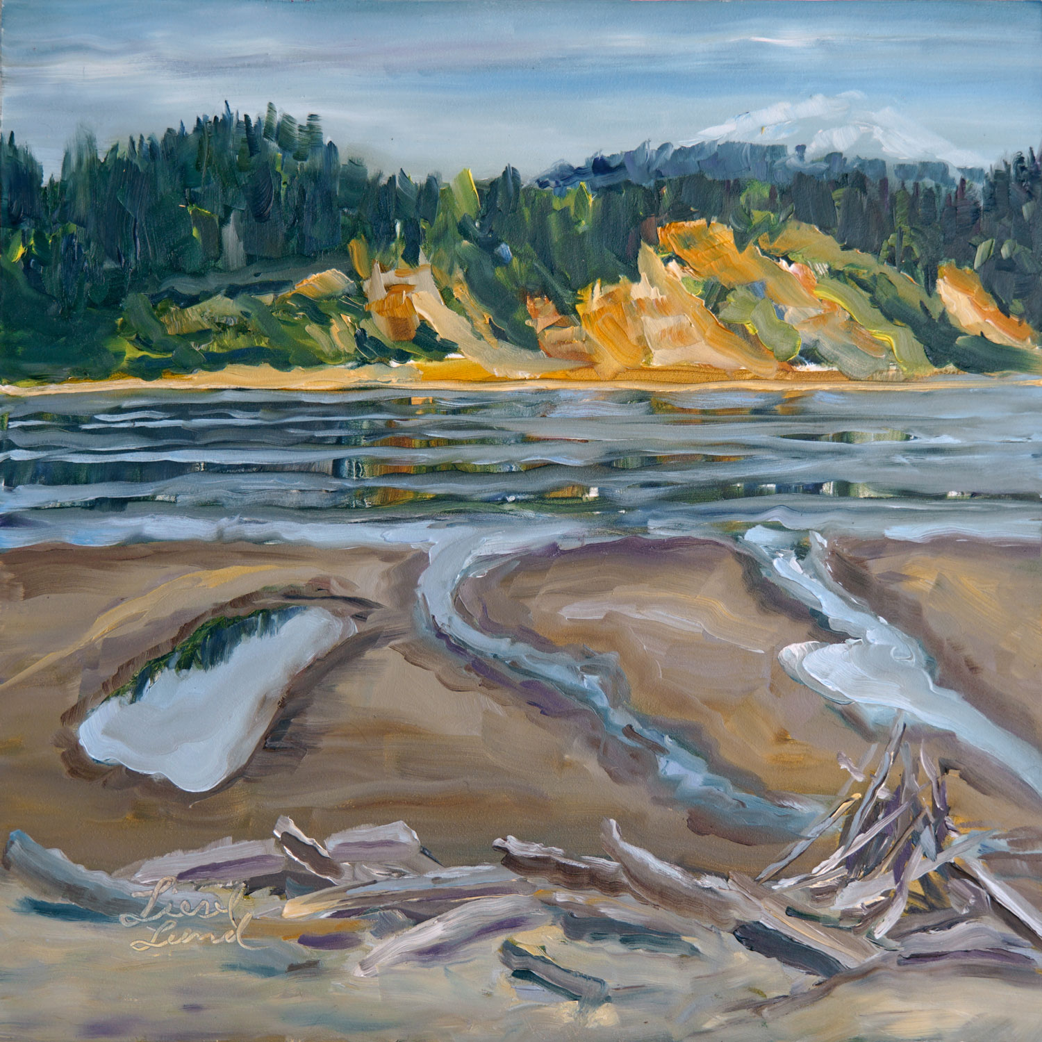 Liesel-Lund__Double-Bluff-Beach,-low-tide-1.jpg