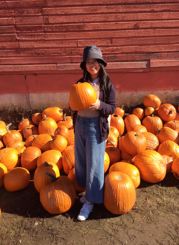 Fall Harvest Celebration.jpg