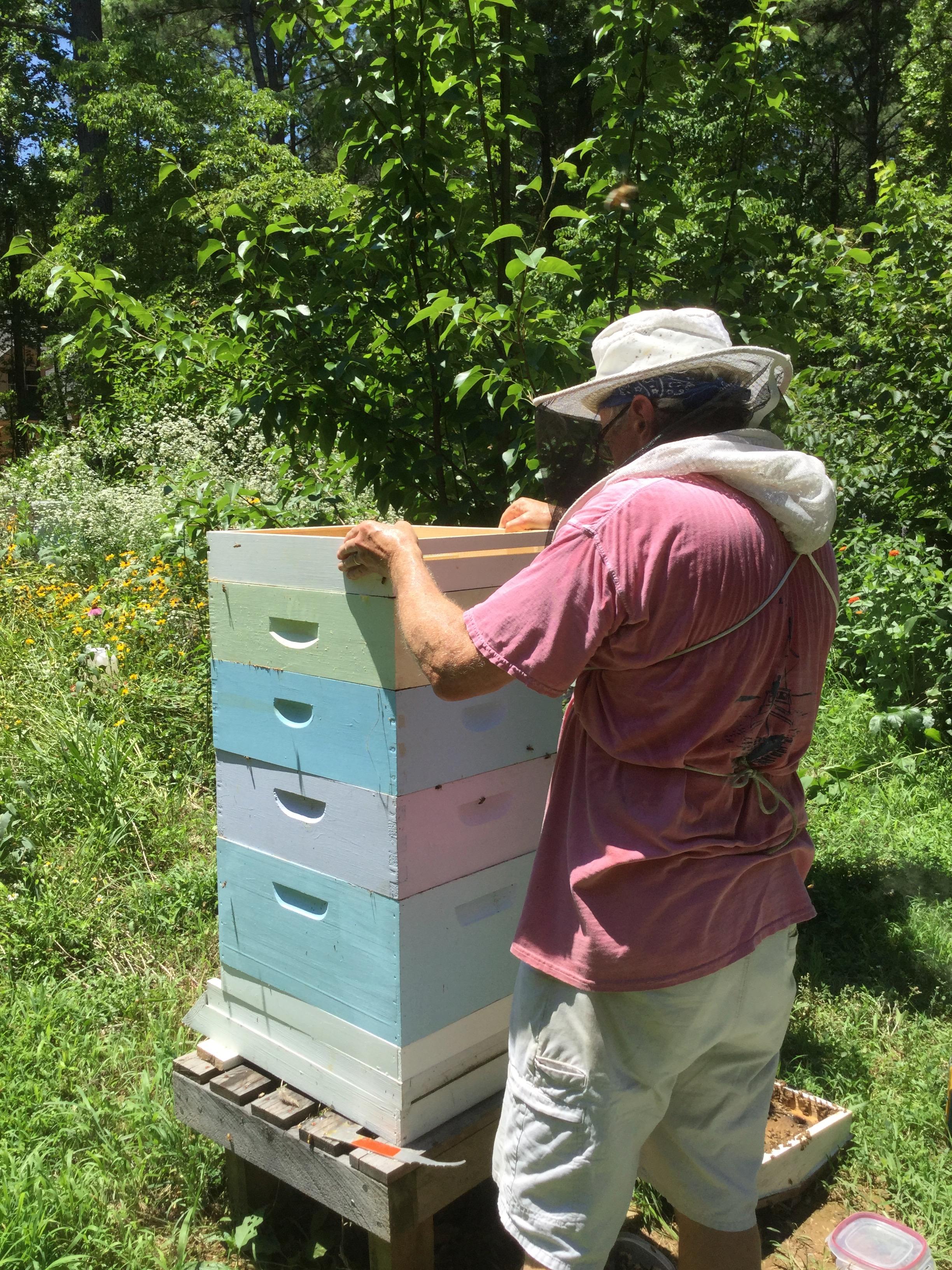 honeybeeman2018.jpg