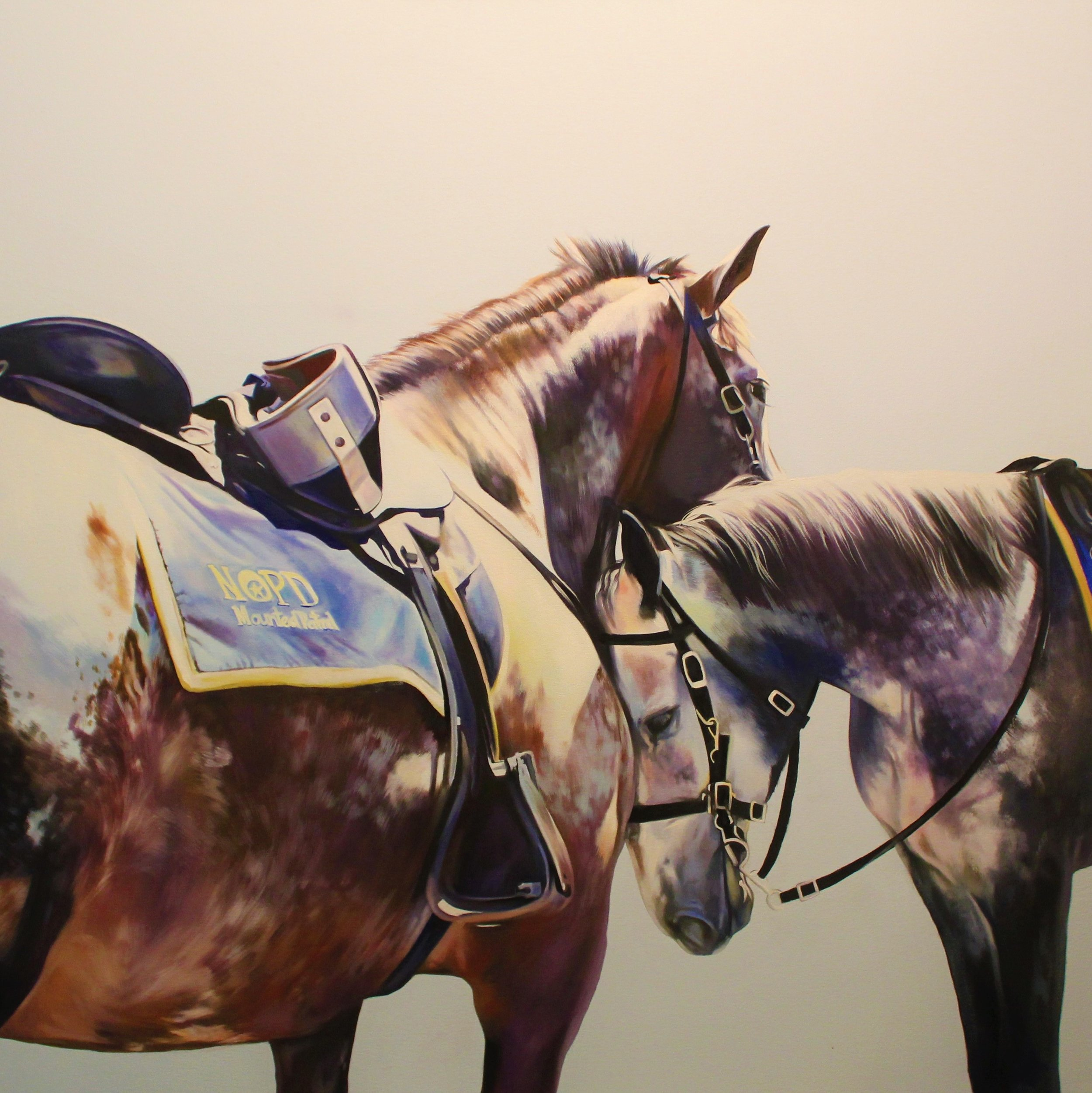 New Orleans Police Department Mounted Patrol Horses