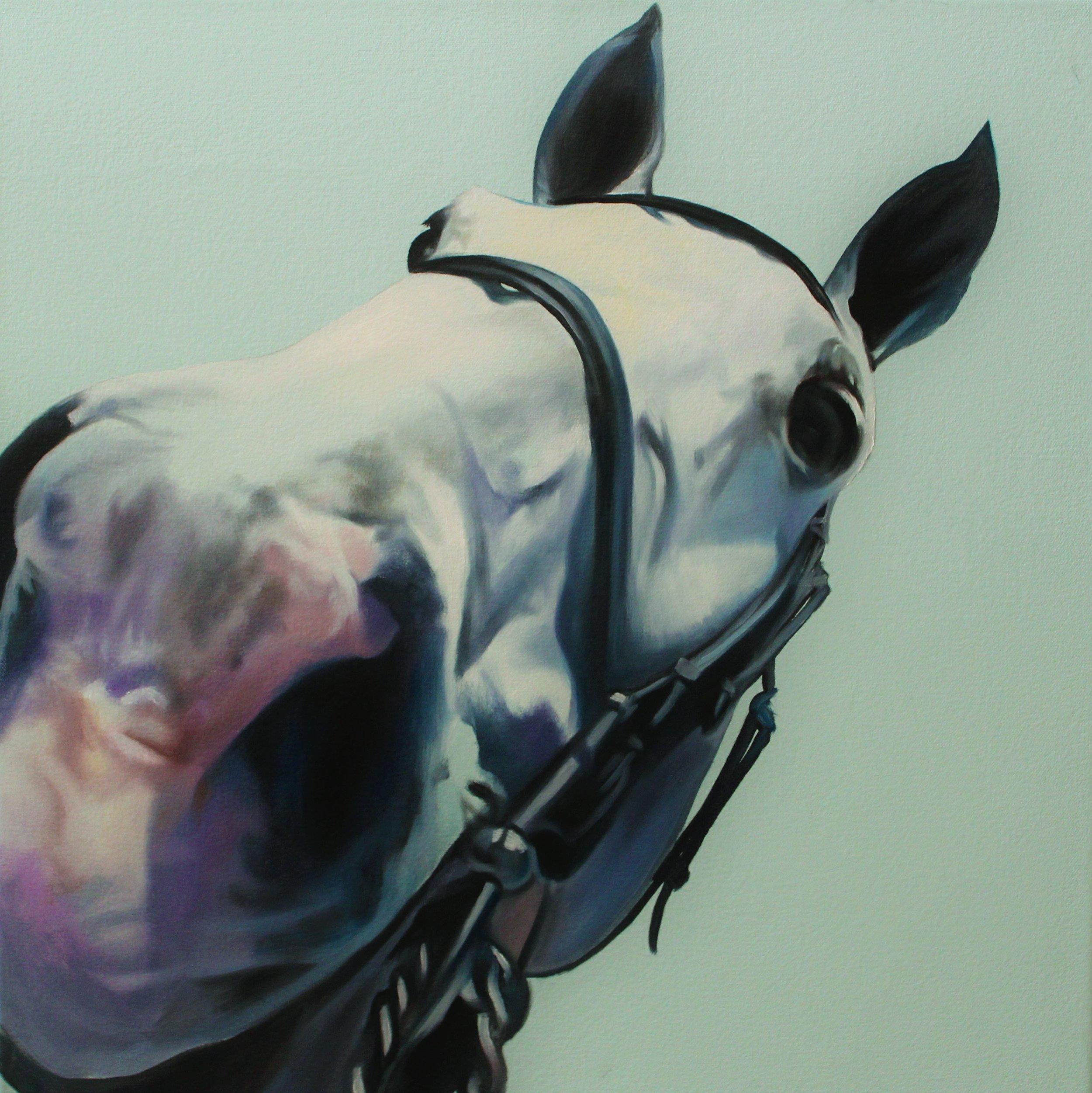 Horse Kisses I (Grey Muzzle)