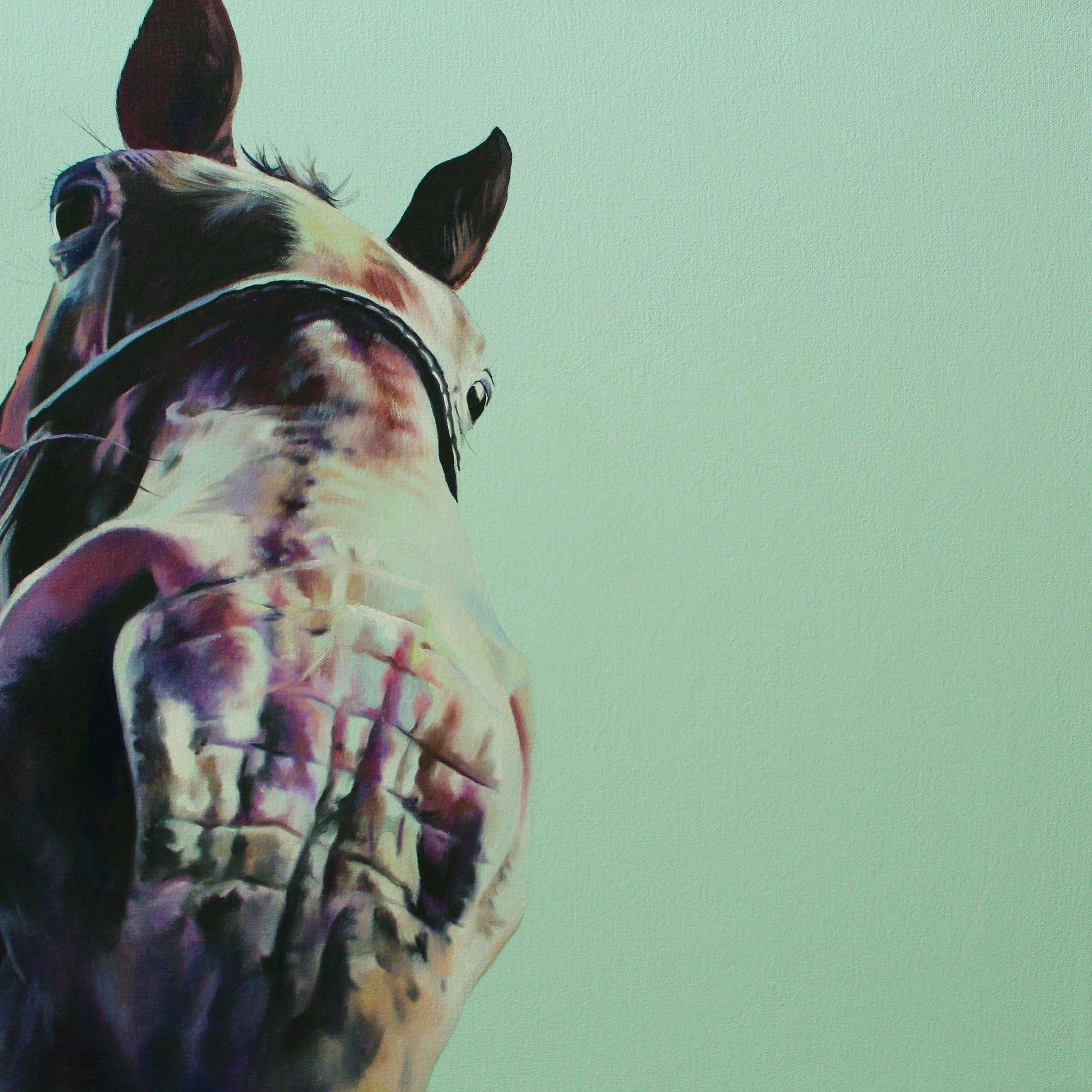 Horse Kisses II (Appaloosa Muzzle)
