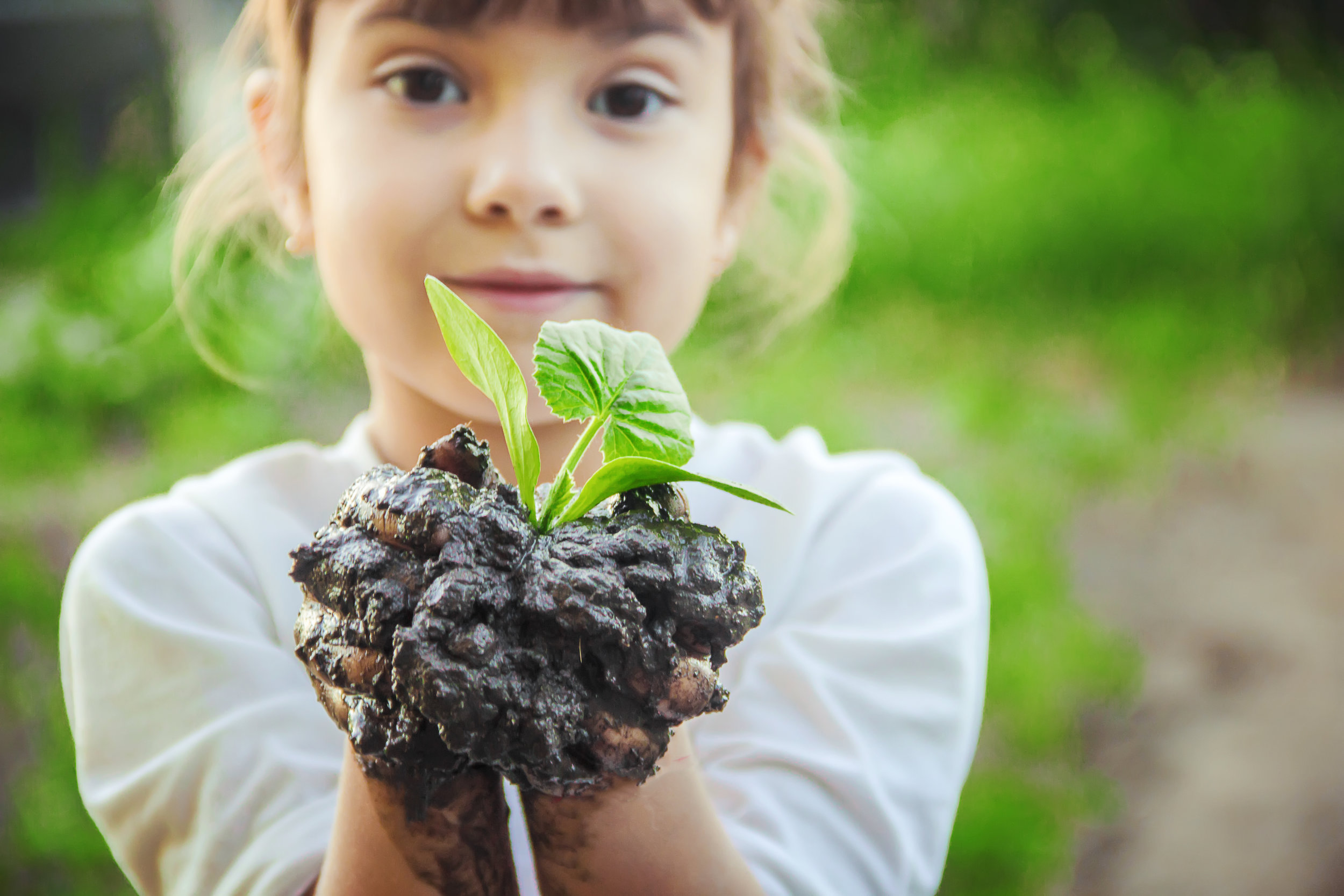 Benefits of children gardening - The benefits of gardening have been well documented and are great for promoting well-rounded development in children. Whether the garden is a yogurt pot on a windowsill, a community space, or a raised bed outside the back door, children who engage with it are harvesting so much more than food and flowers.