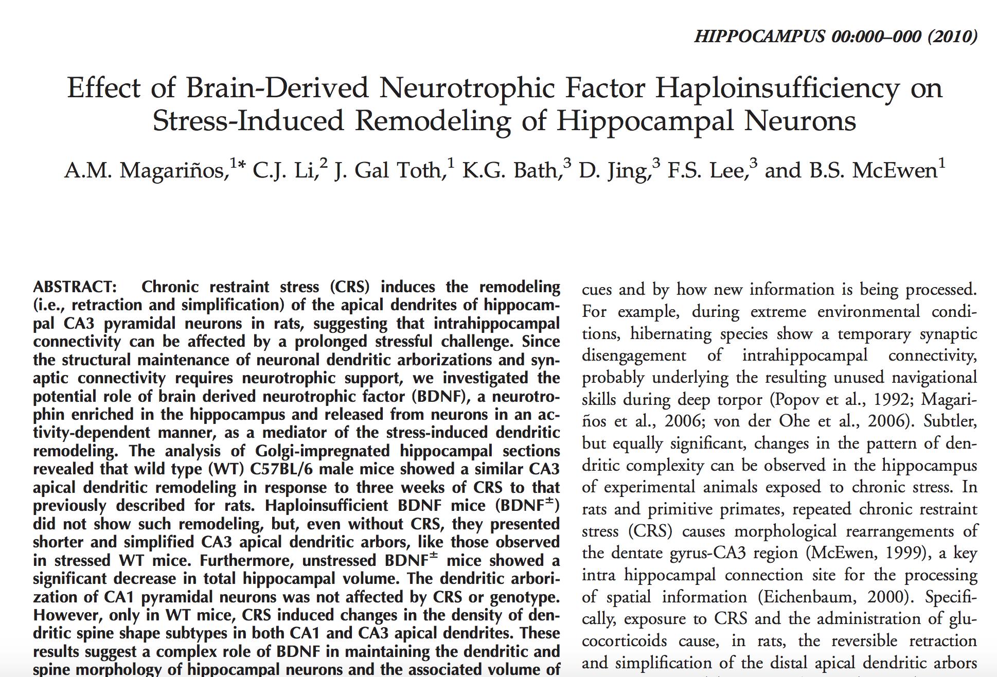 Magarinos et al., 2010.     Hippocampus.