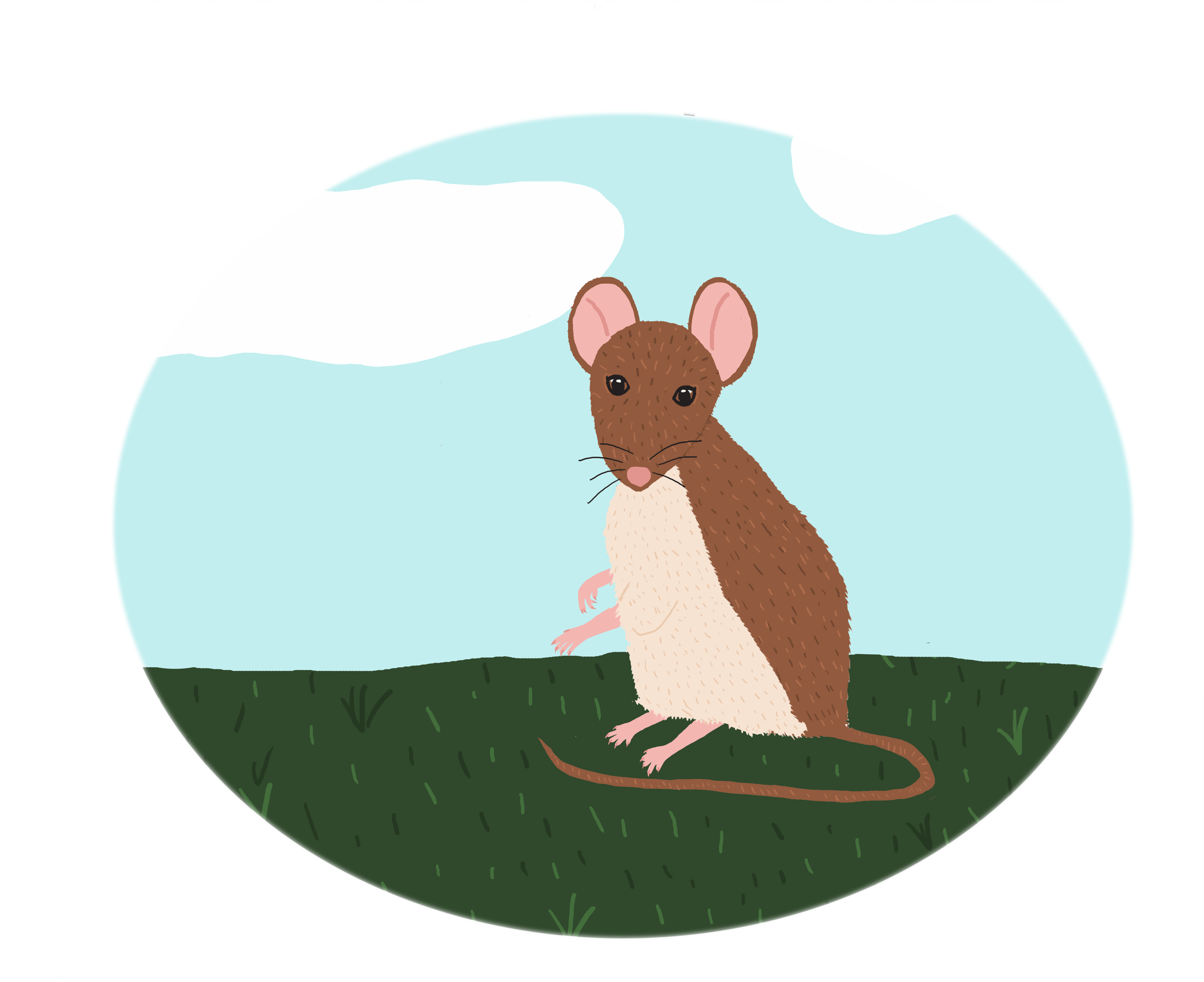 mousepeckercoversmall.png