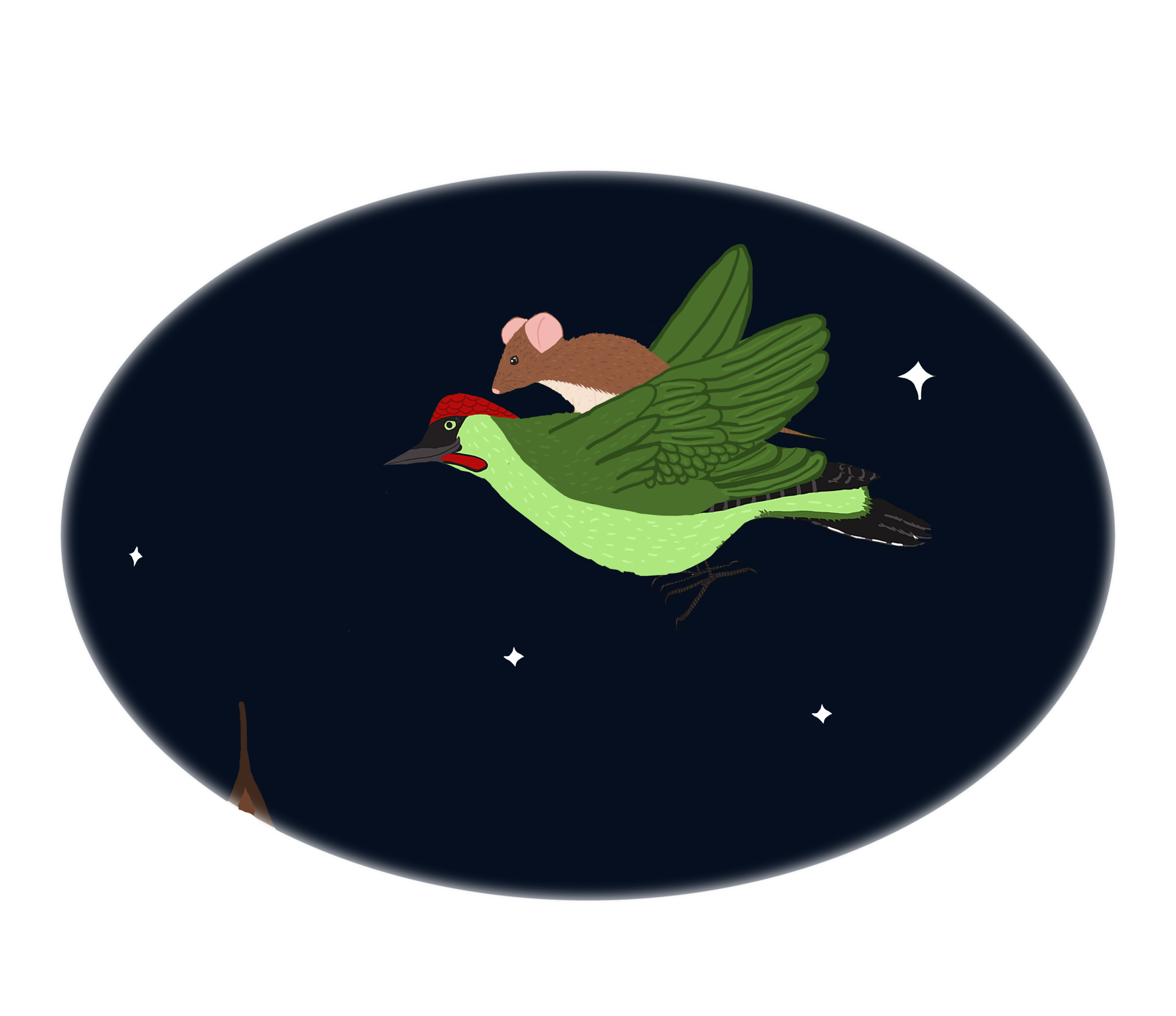 squarespacemousepecker.png