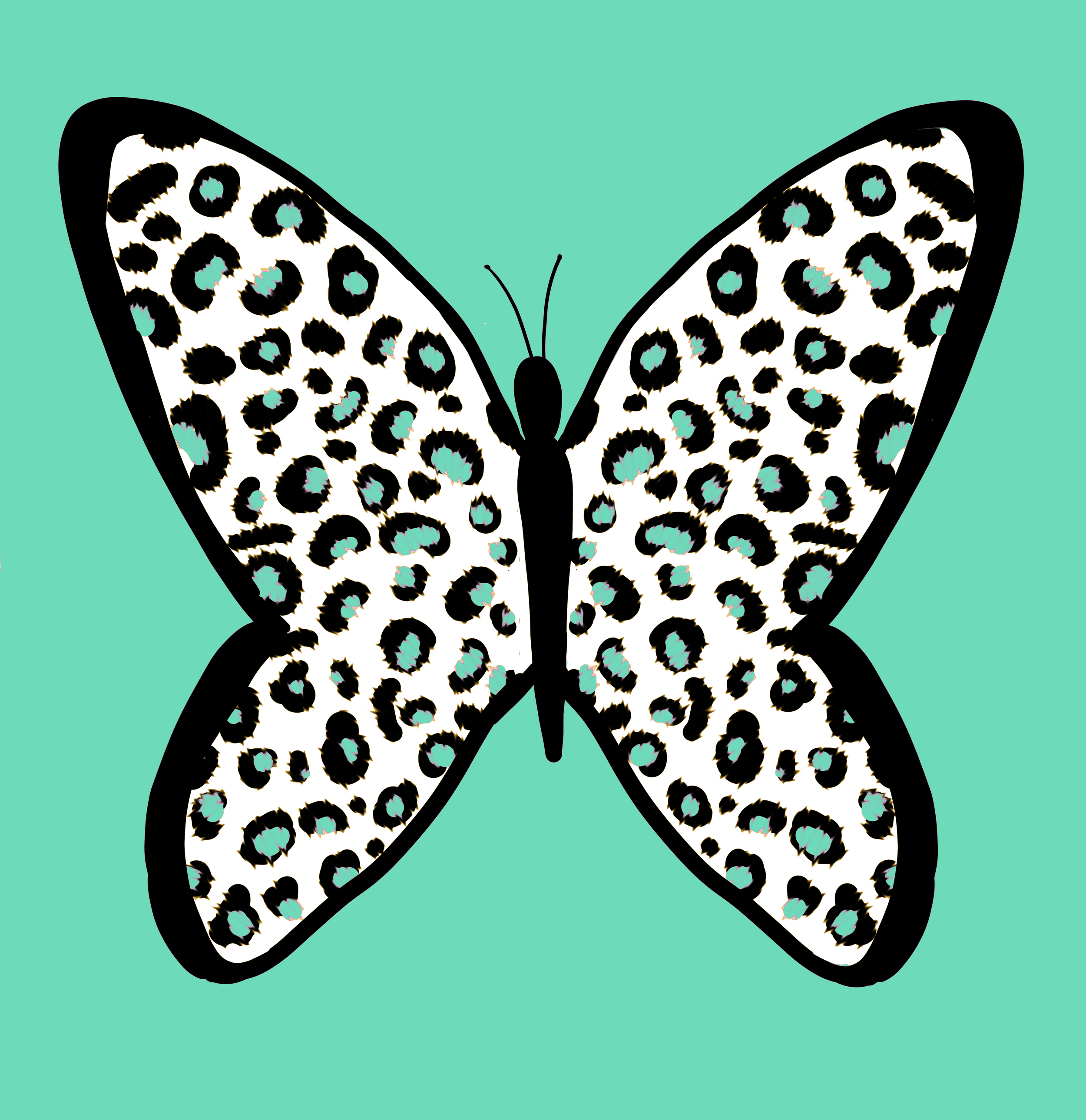 butterflywhiteteal.png