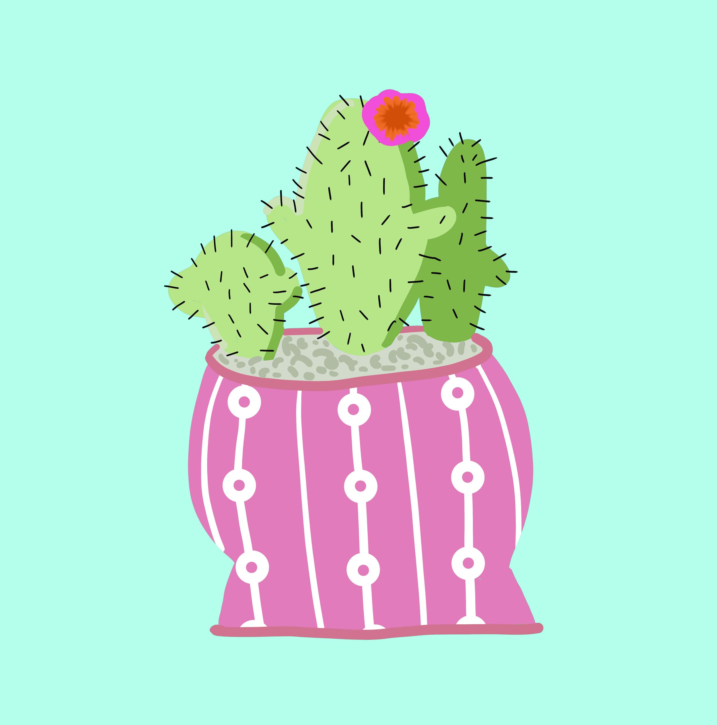 Cactus2pink.png