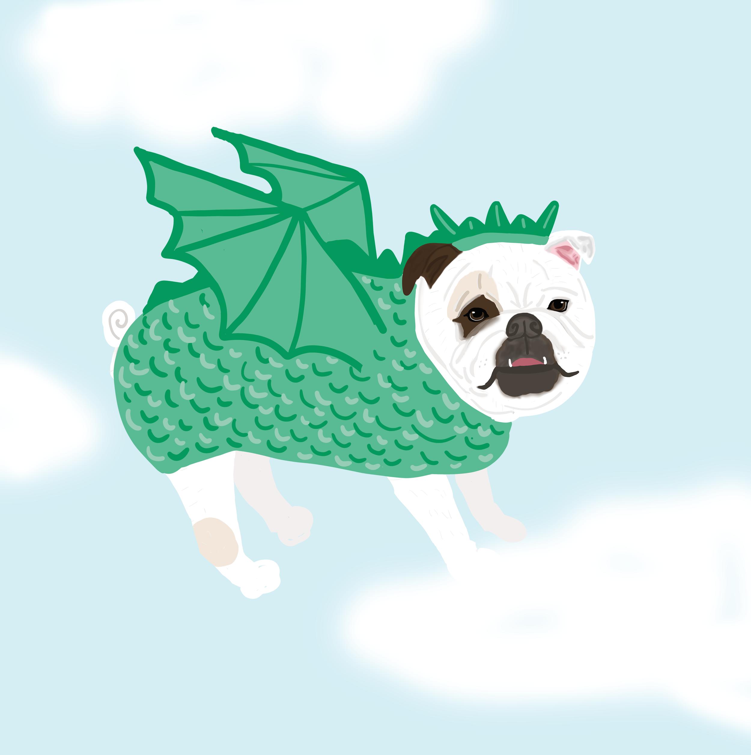 dragonbulldog.png