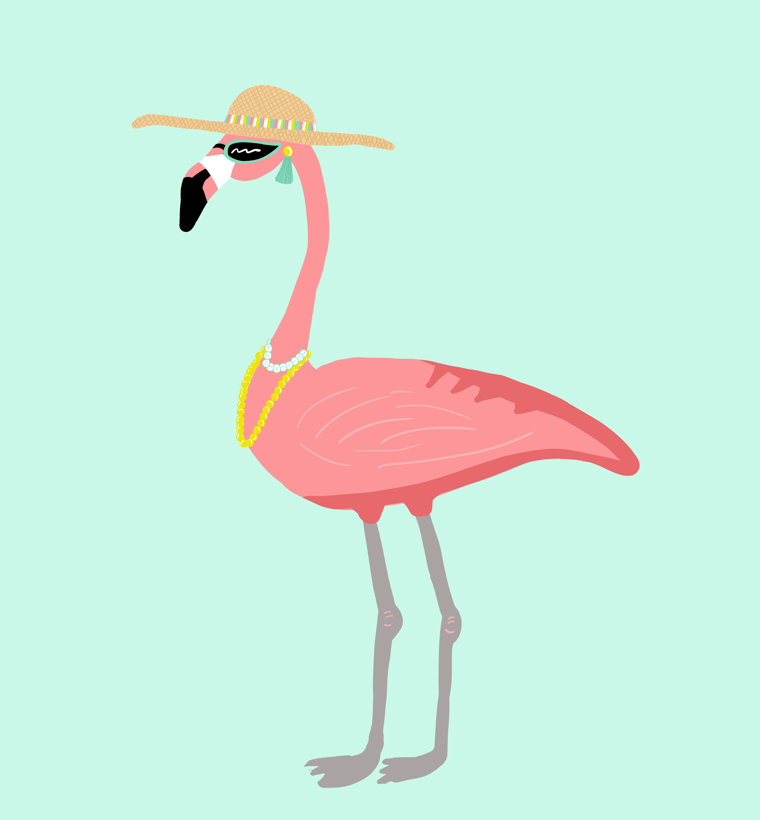Flamingogirly.png