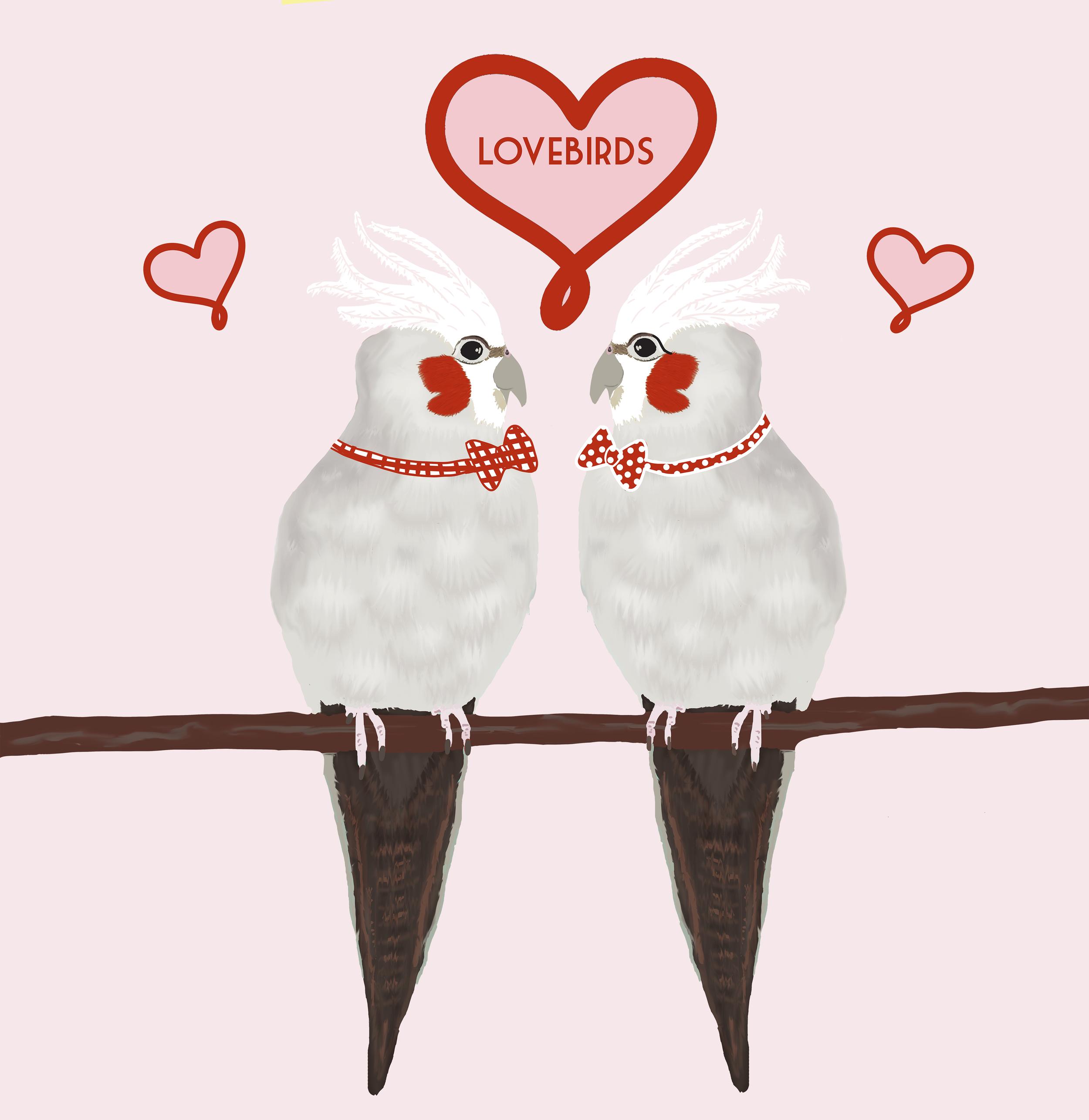 Lovebirdscouplemensmall.png