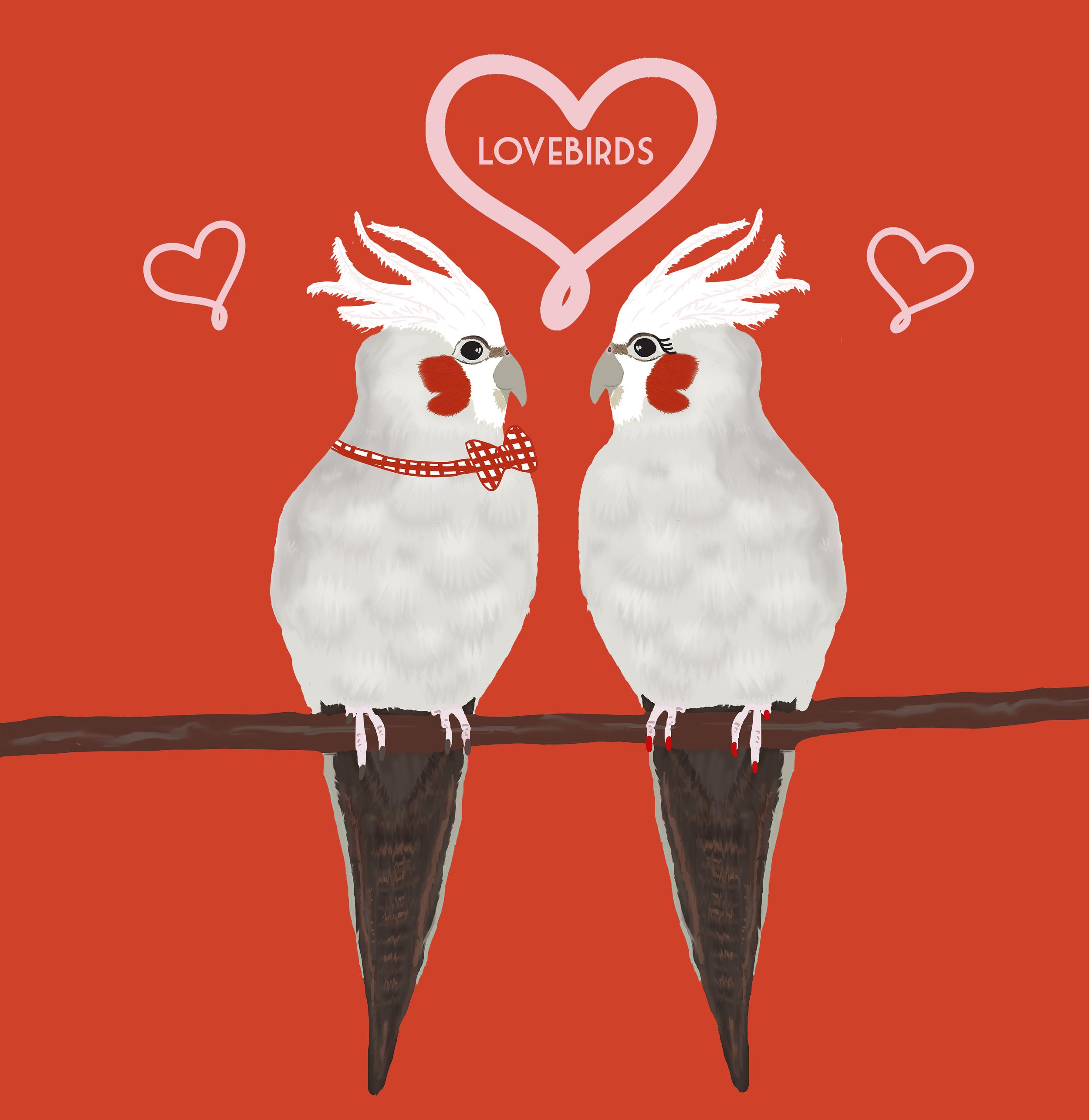 Lovebirdscouplesmall.png