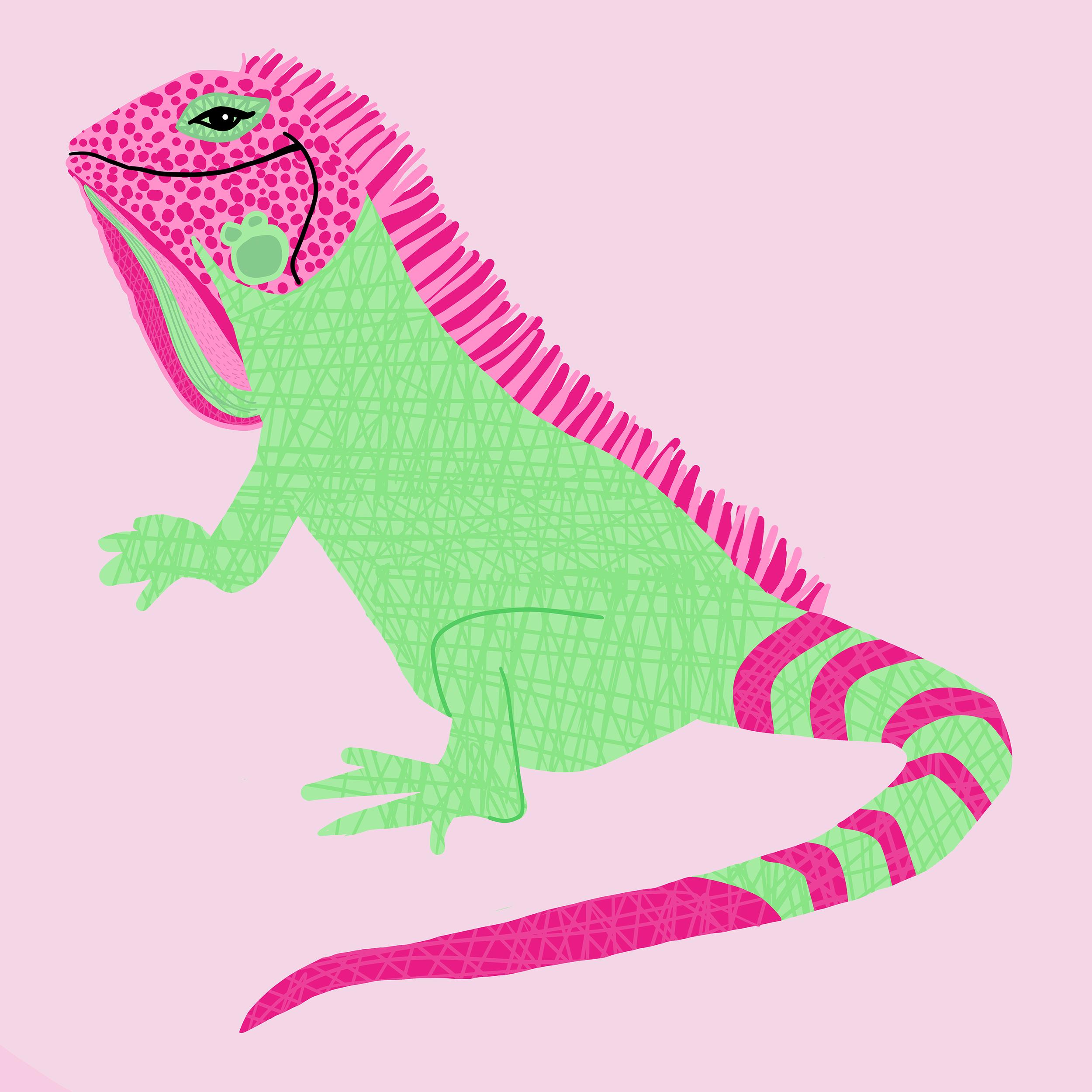 IguanaSML.png