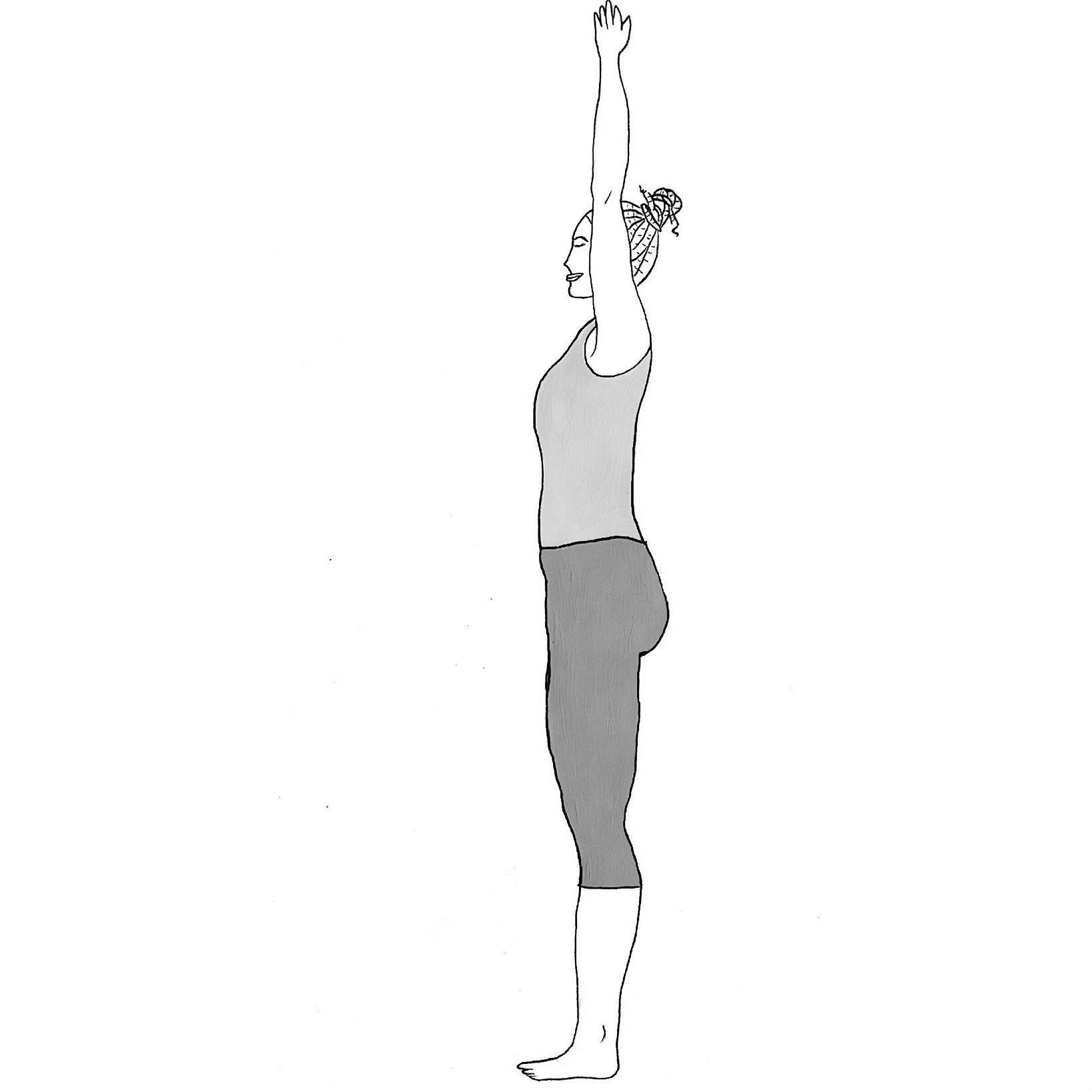 Upward Salute - Urdhva Hastasana/Vrikshasana