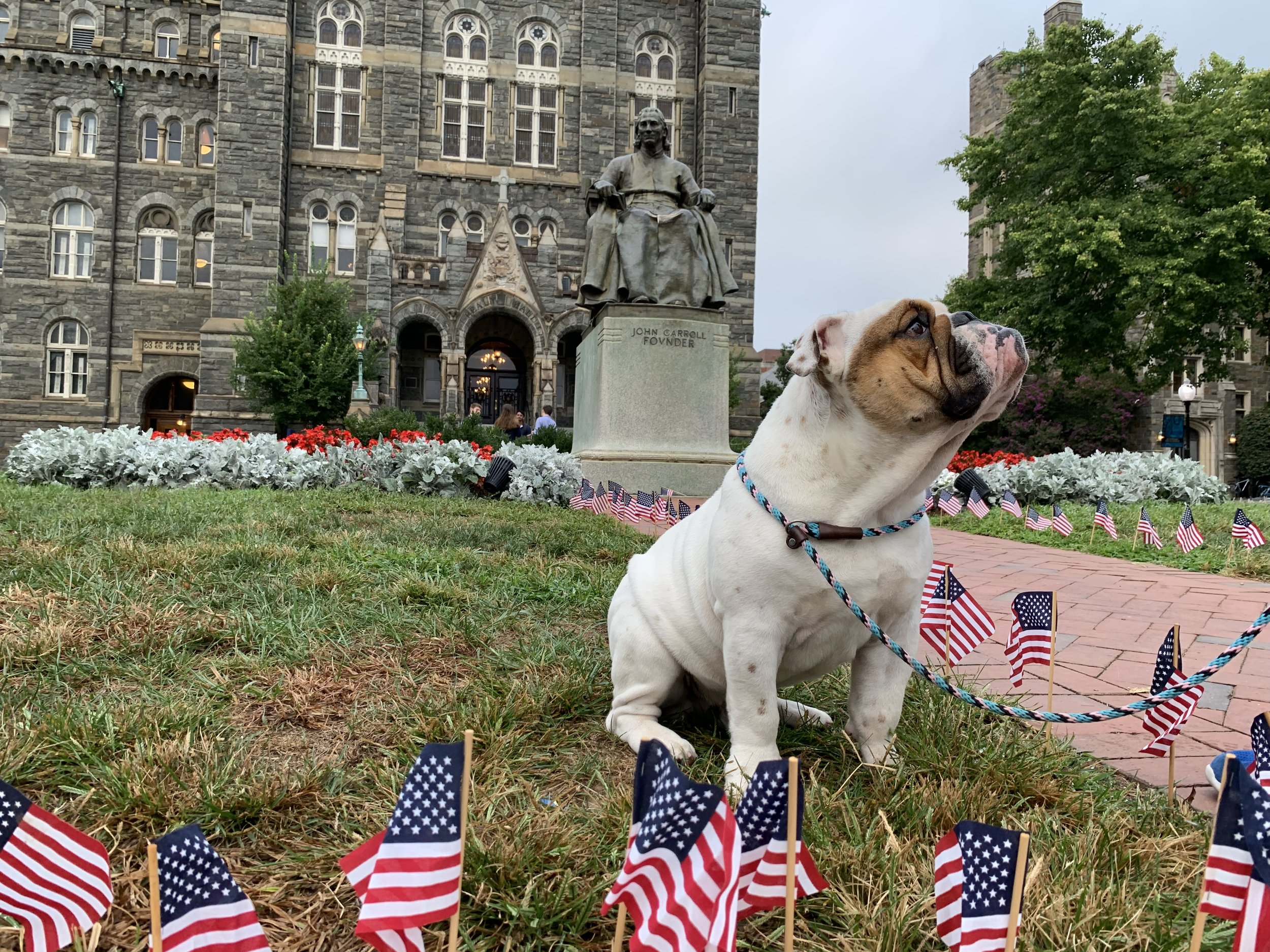 Georgetown mascot Jack the Bulldog poses in front of the John Carroll statue. (9/11/2019)