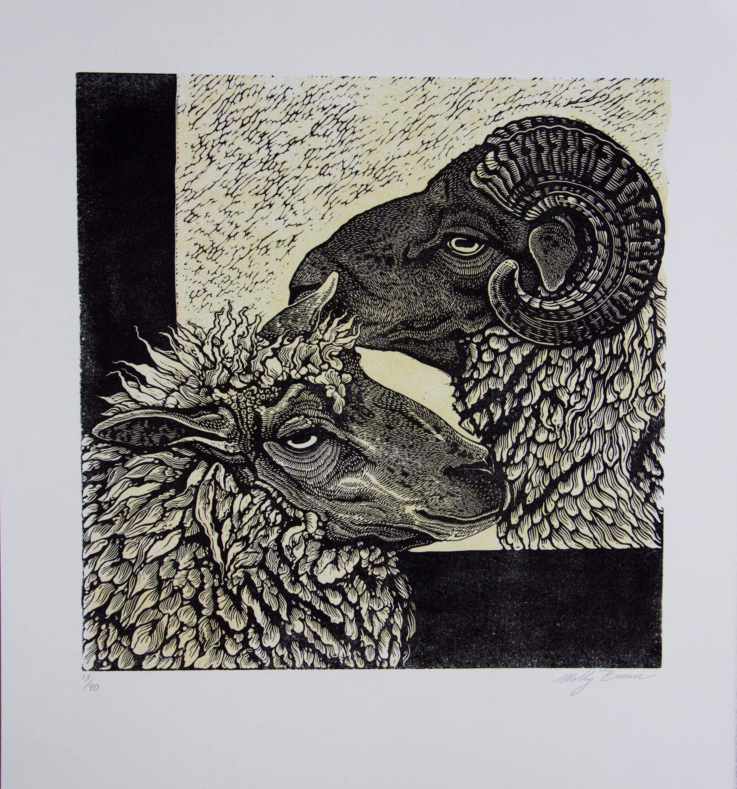 sheep (1).jpg