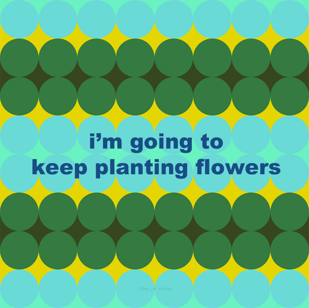 PLANT FLOWERS  winter/ mantra, positive messages, plant, gardener, flowers.