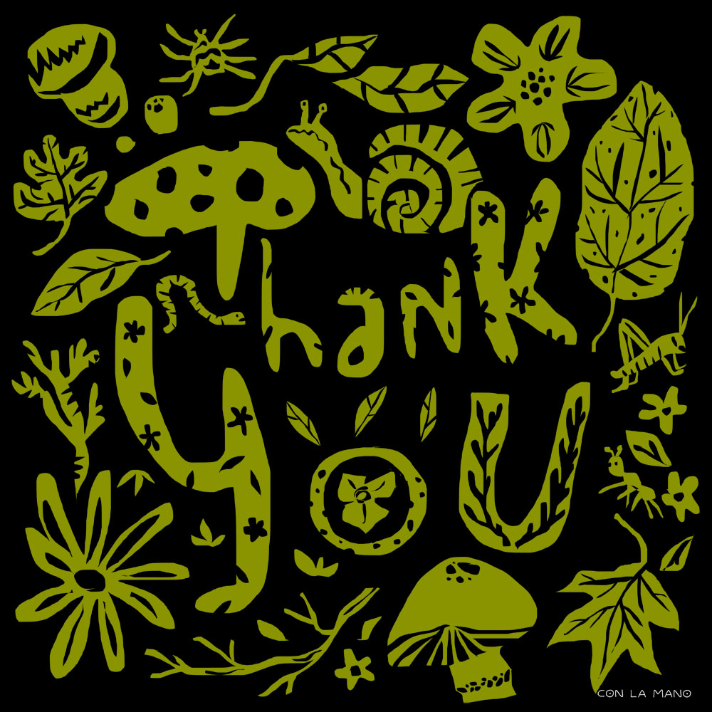 THANK YOU  mood/ nature, papercut, green, greens, veg, bugs, flowers, leaves.