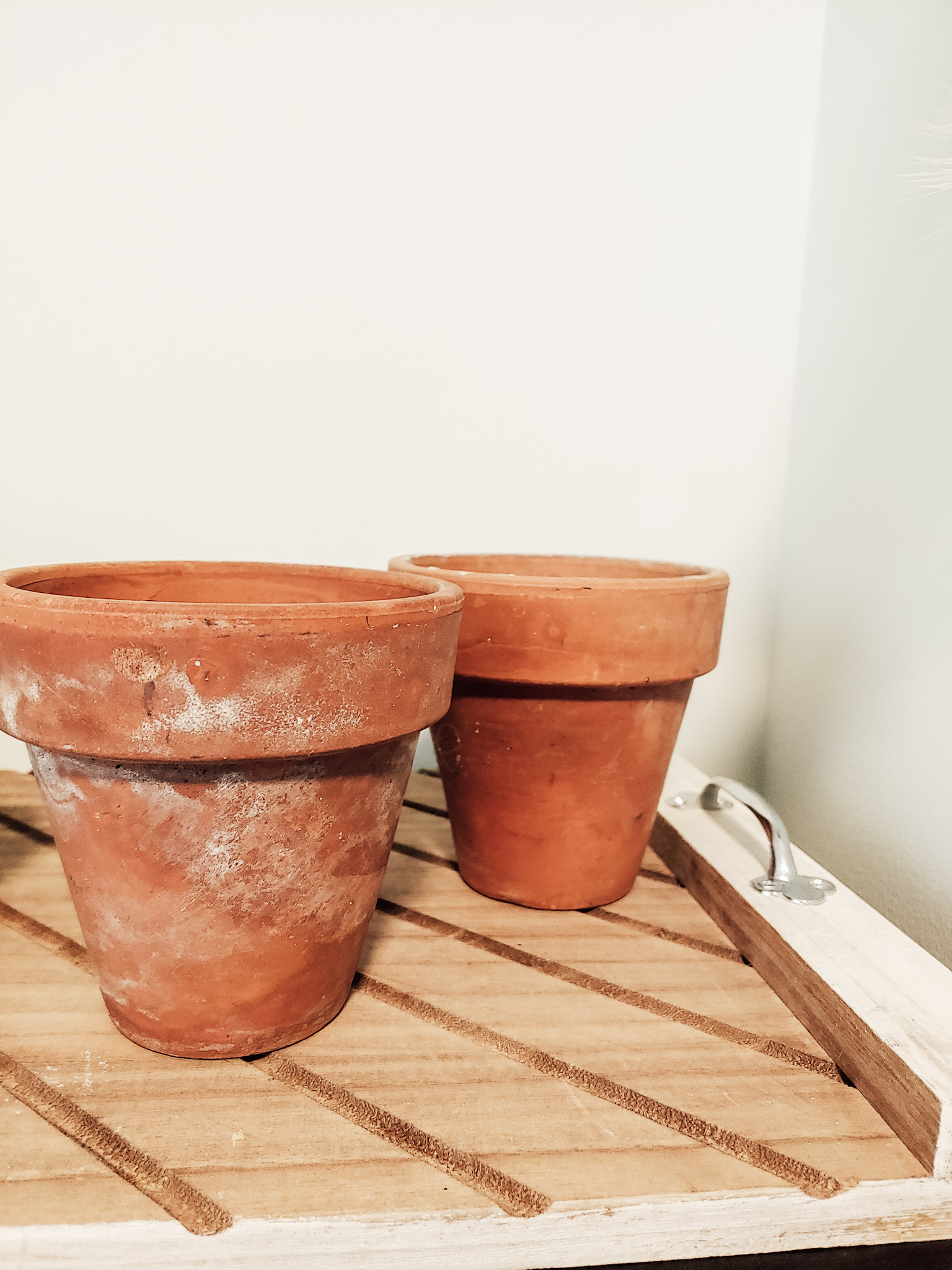 I found these vintage terra cotta pots to mix in with the new ones I have recently picked up