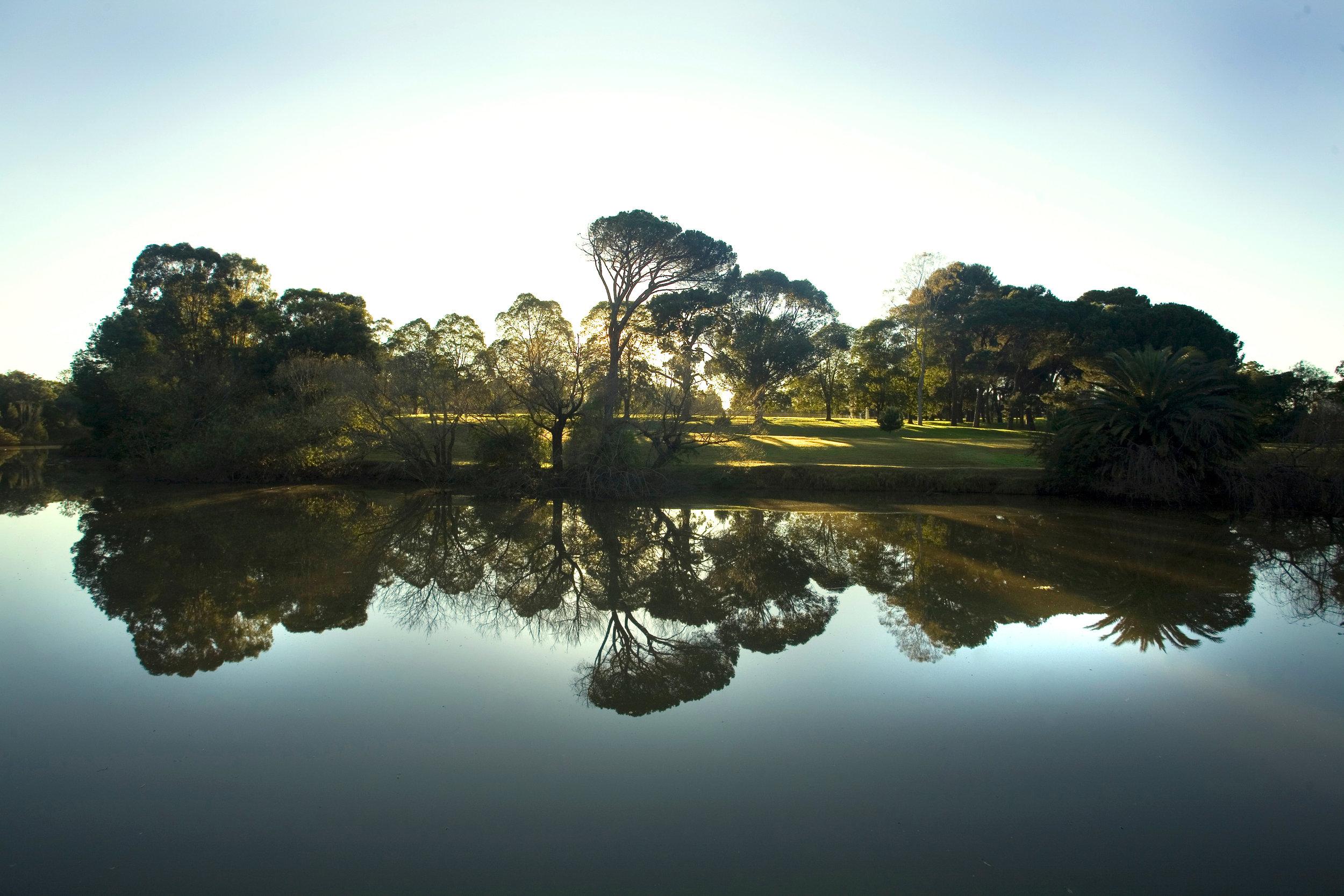 Parramatta River2.jpg
