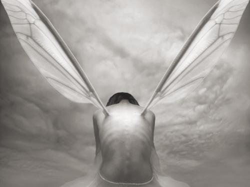 Night Fly - Dariusz Klimczak