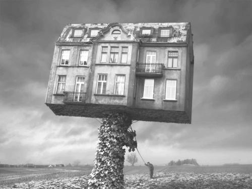 Mad Architect - Dariusz Klimczak