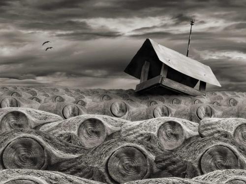Stormy - Dariusz Klimczak