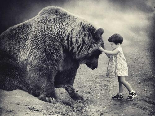 Bear Hug - Sarolta Bán