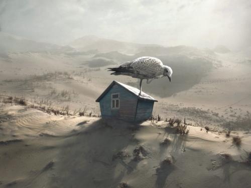On the Nest - Dariusz Klimczak