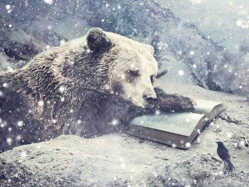A Winter's Tale - Sarolta Bán