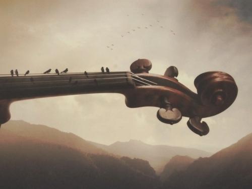Concerto Pastorale - Sarolta Bán