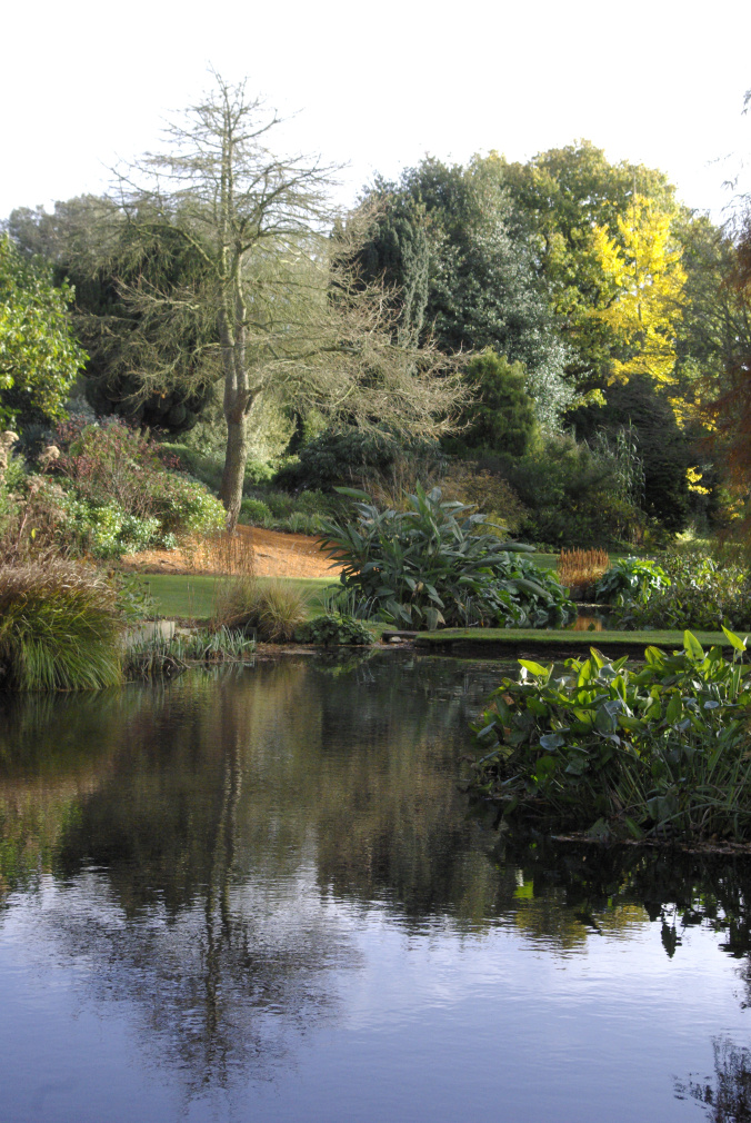 View across the water garden