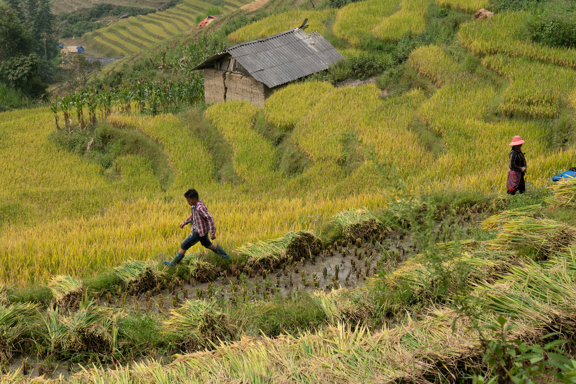 vietnam-42.jpg