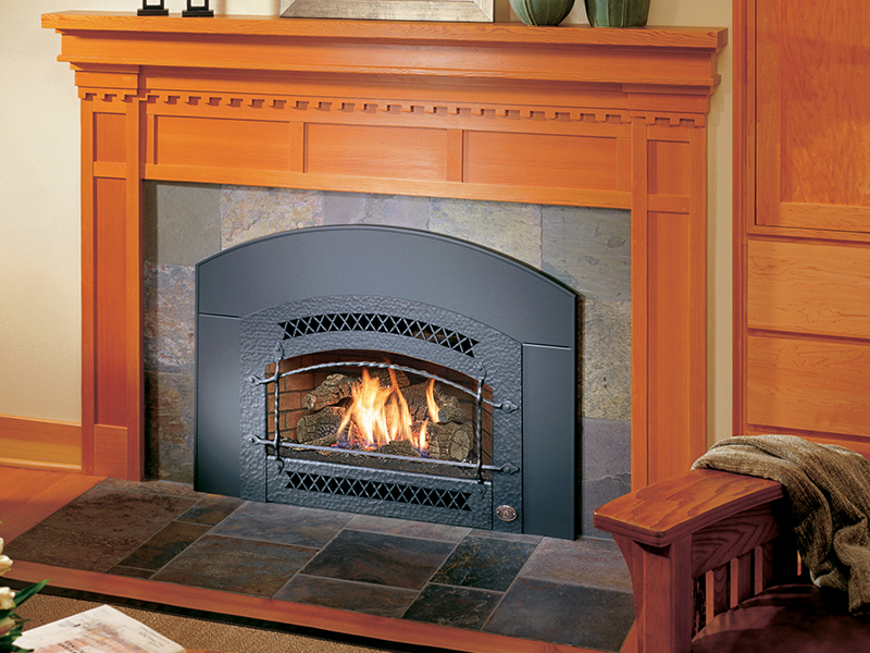 Northern Michigan's Fireplace Xtrordinair 32 DVS gas insert retailer.