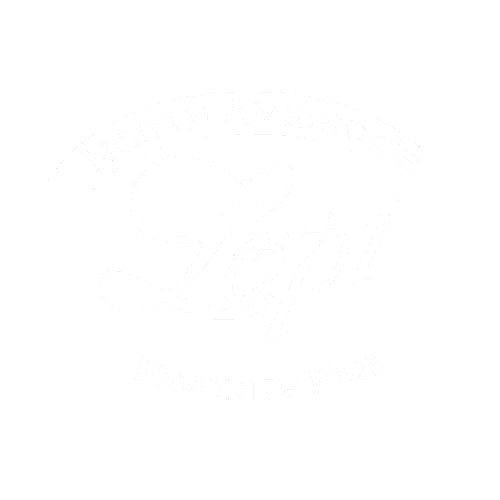 Lopi Gas Burning Stoves