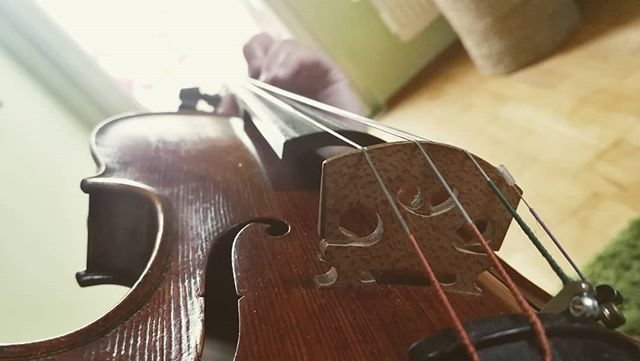 Ever wondered what practicing looks like from my perspective? 😉 .  The bow is missing though.. Had to have my hand free for taking the photo 😂🤷🏼‍♀️ . . . #afternoonpractice #yesimsittingonthefloor #fiddlefiddlefiddle #practicing #practicesession #myperspective #kirstieelen #kirstie #elen #violinist #violin #violine #geige #acousticviolin #elena #modernviolinist #musician