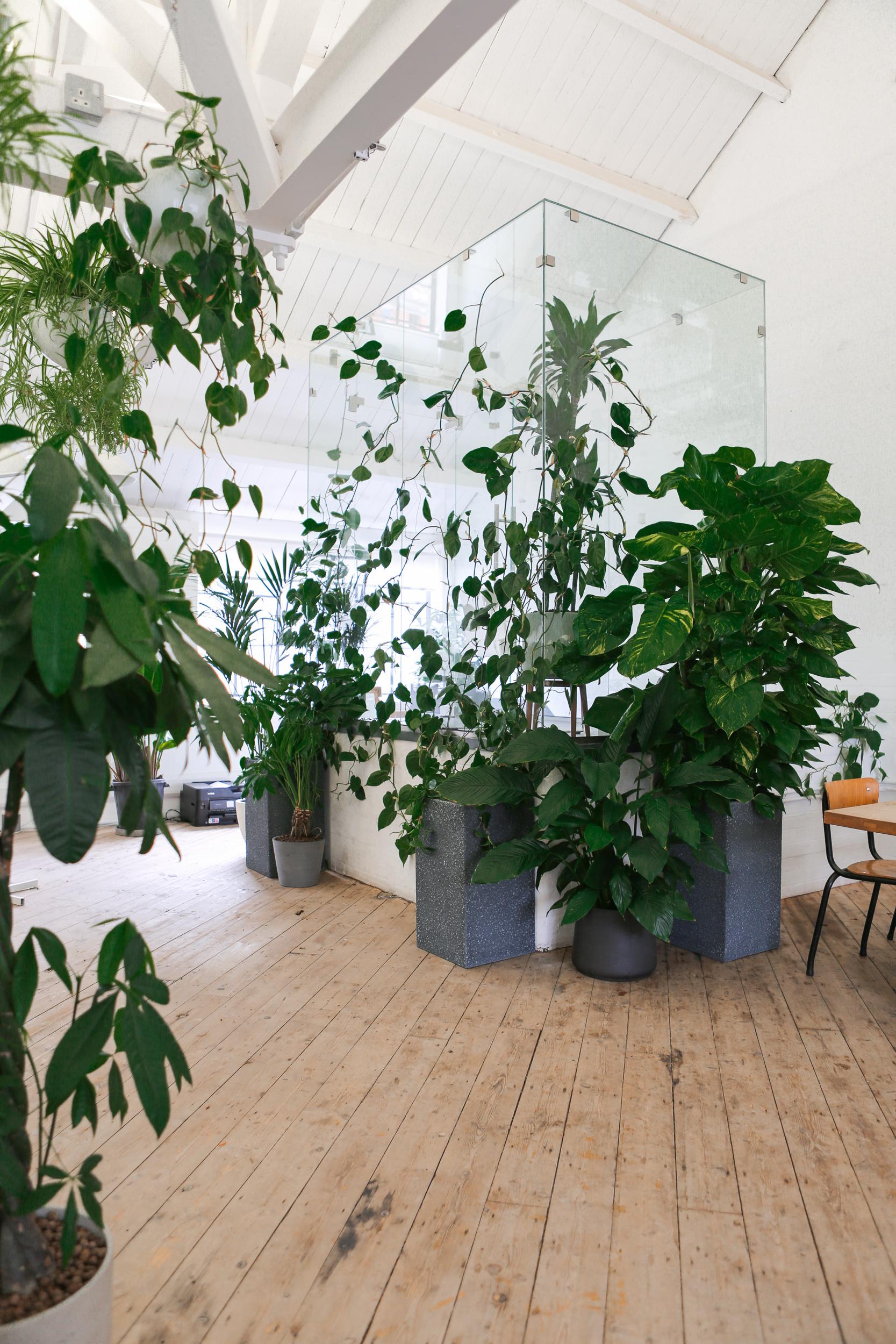 Byte Greenhouse.jpg