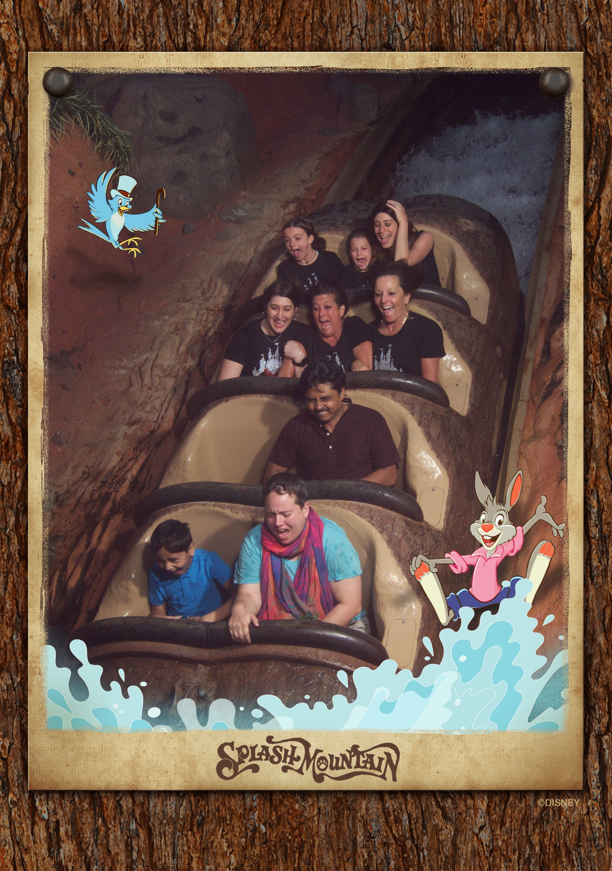 a trip to disney would not be complete without splash mountain!!