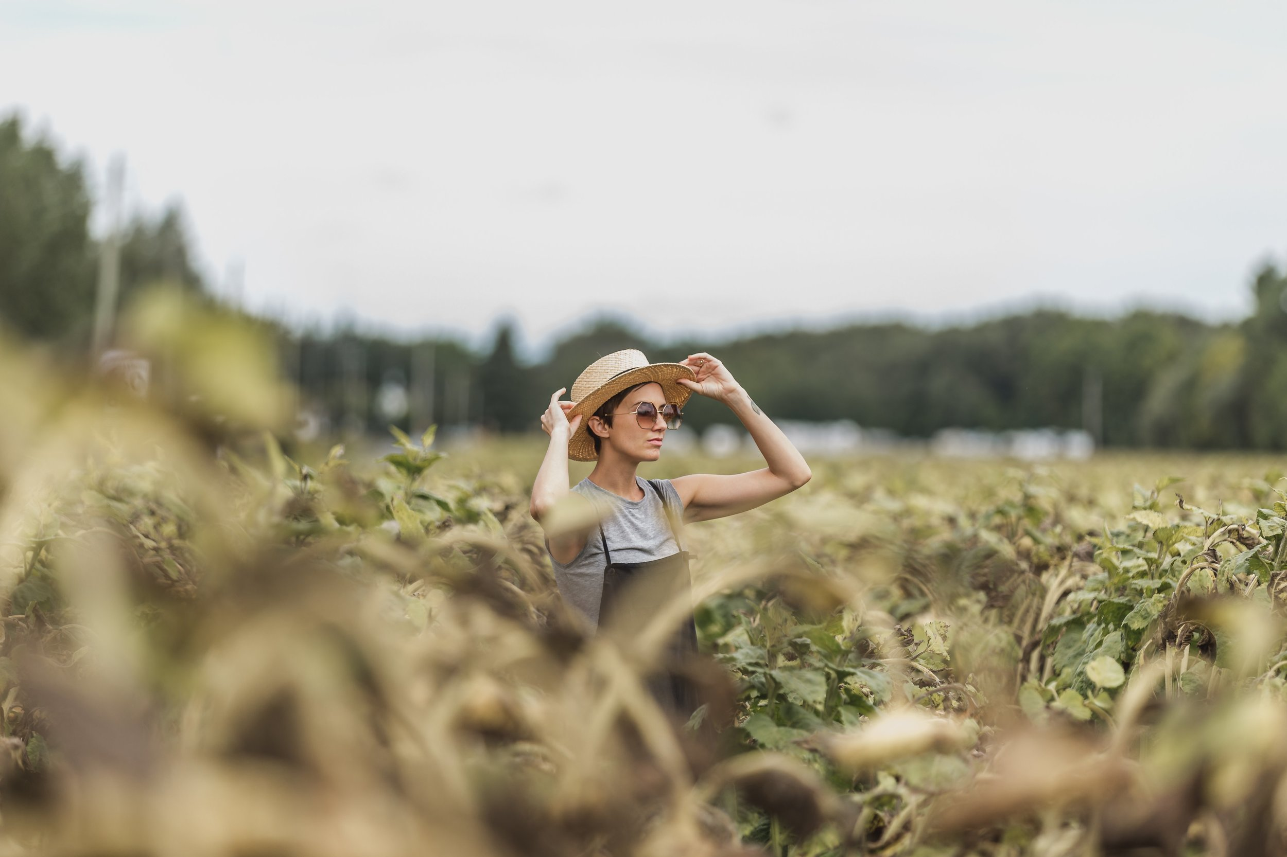 woman-holding-hat-while-standing-in-dried-sunflower-field.jpg