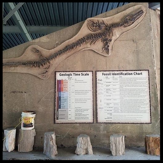 Fossil Discovery Times/Days for the General Public: - July - August: Fridays at 12:00 PM only