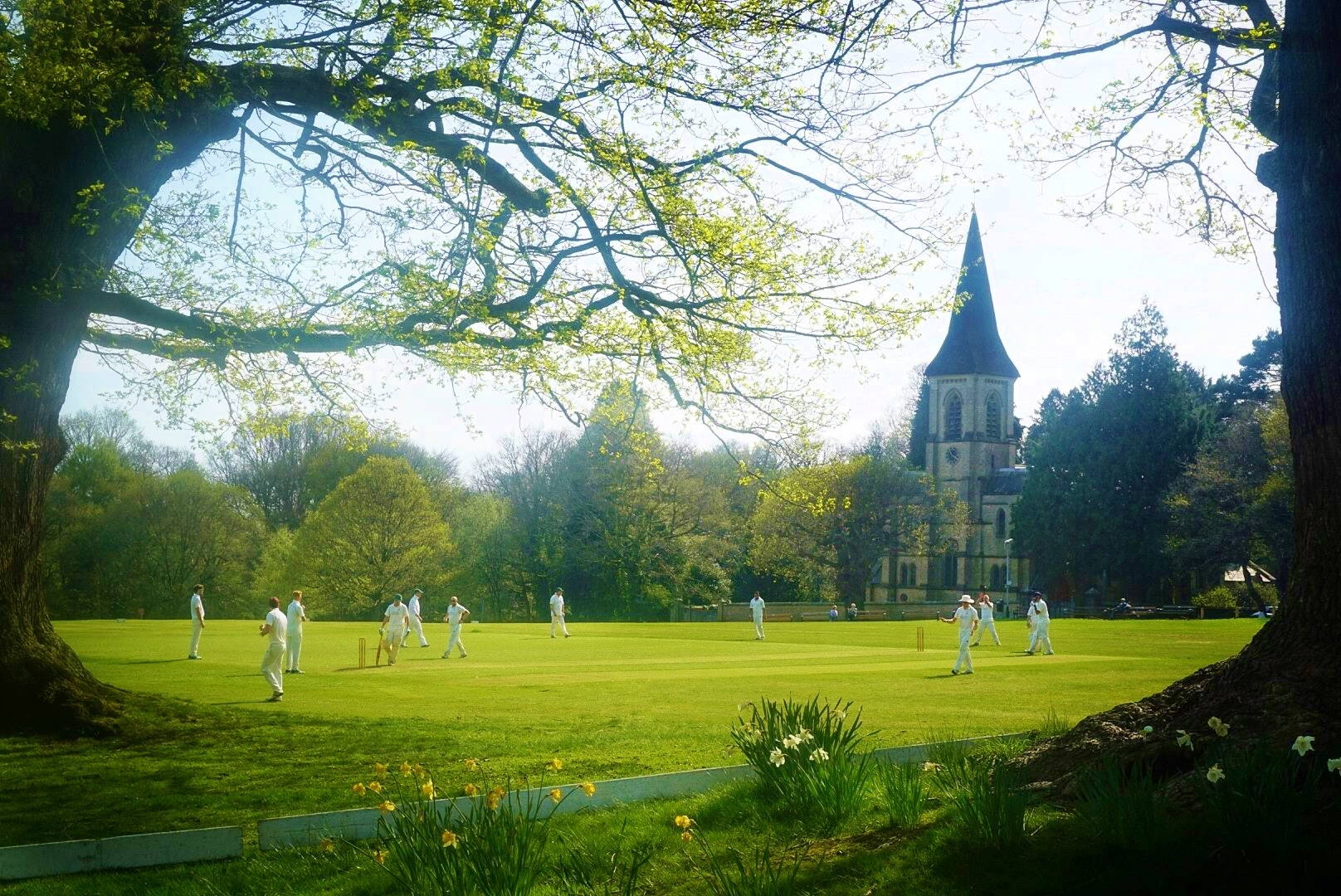 Cricket & St Peter's.JPG