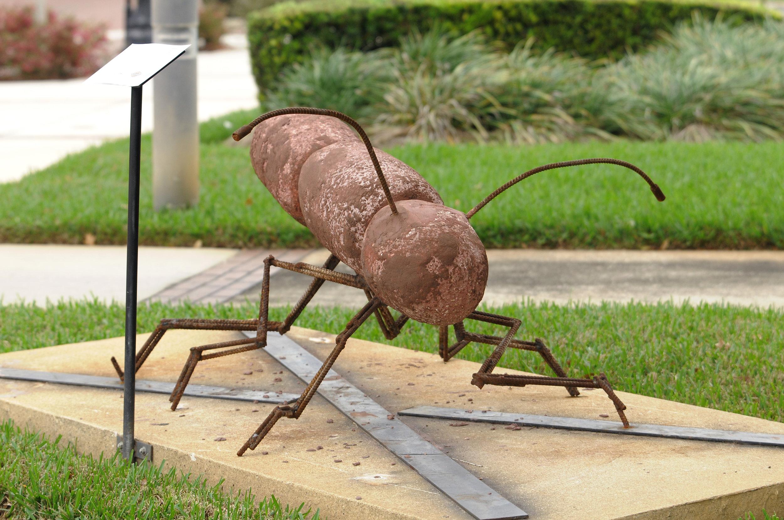 Gra-ant