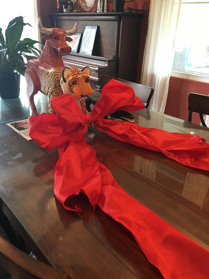red ribbon kapp kappy.jpg