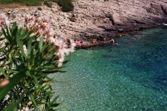 island-vis-summersalt-yoga8.jpg