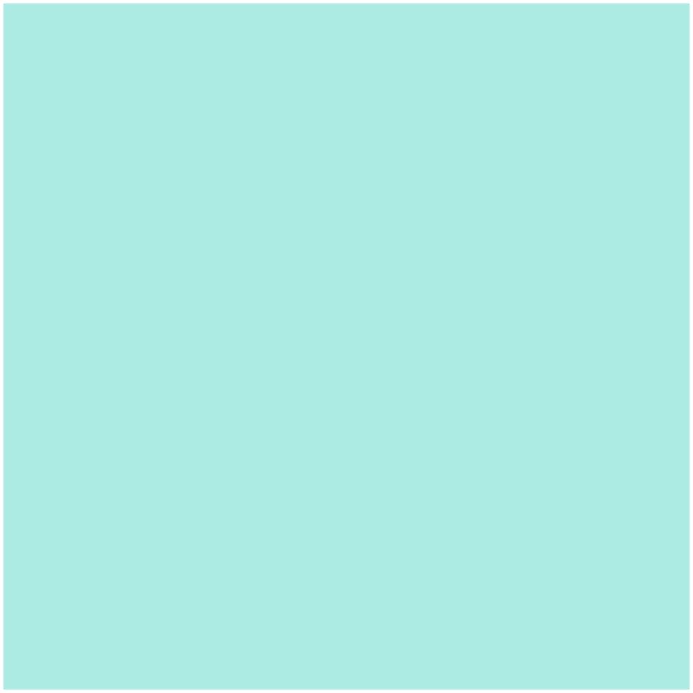 Compass-flower_4.png
