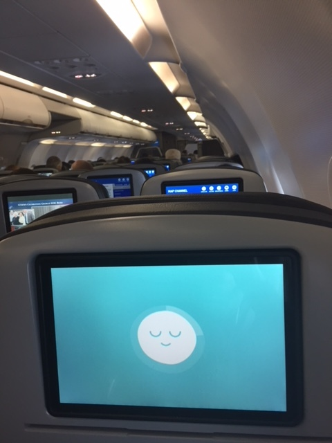 On one of my flights I discovered the magic of listening to a Headspace meditation. Highly recommend.
