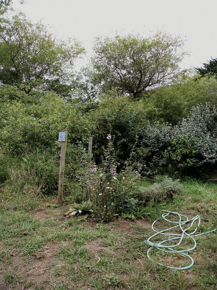 Kinked hose and post