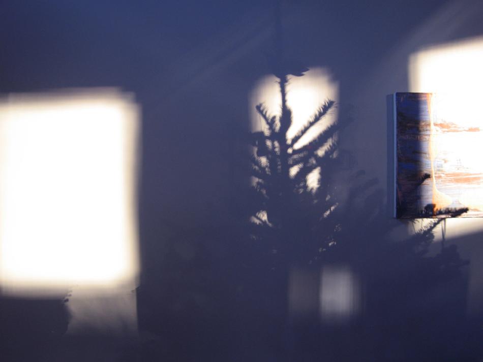 Dove, 2006 – 22 x 33