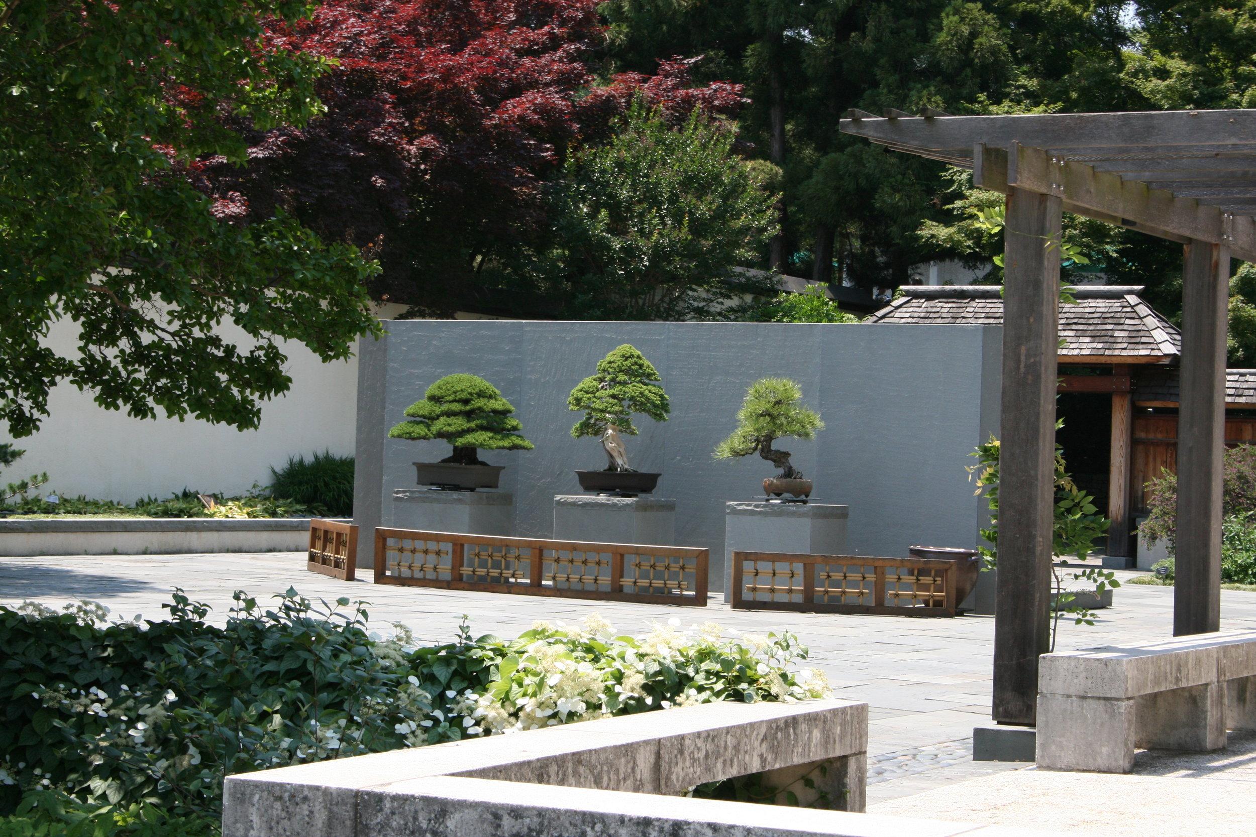 Upper courtyard 201006.JPG